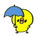 傘をさすひよこ
